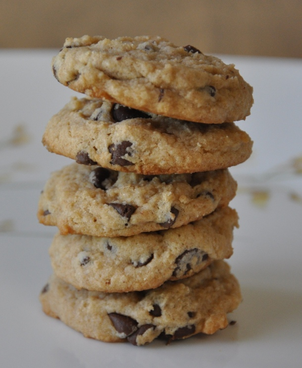 Low Fat Yogurt Cookies with Chocolate Chips 5a