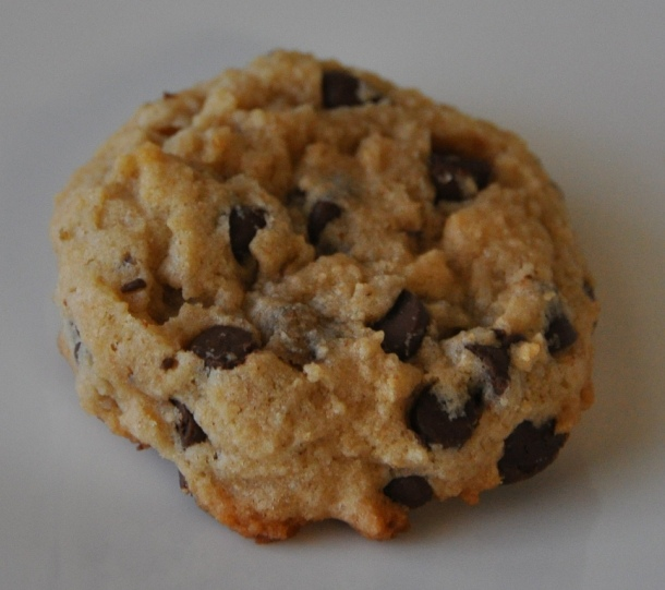 Low Fat Yogurt Cookies with Chocolate Chips 6a